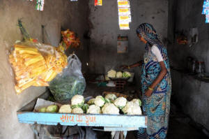 Photo of a woman vegetable vendor. An Indian vegetable vendor, an SKS Microfinance loan recipient, manages her stall in a village near the city of Ahmedabad. Microsavings programs are bringing the benefits of thrift even to the poorest of the poor. Photo: Sam Panthaky/AFP/Getty Images